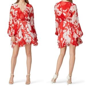✨ Caroline Constas Olena Dress ✨